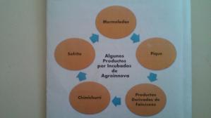 En la foto, algunos de los productos que son producidos en Agroinnova y que esperan algún día puedan ser exportados.