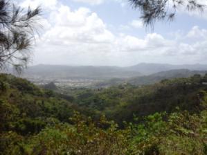 Al fondo en la foto, se muestra el Valle del Turabo Foto por: Desireé Flores