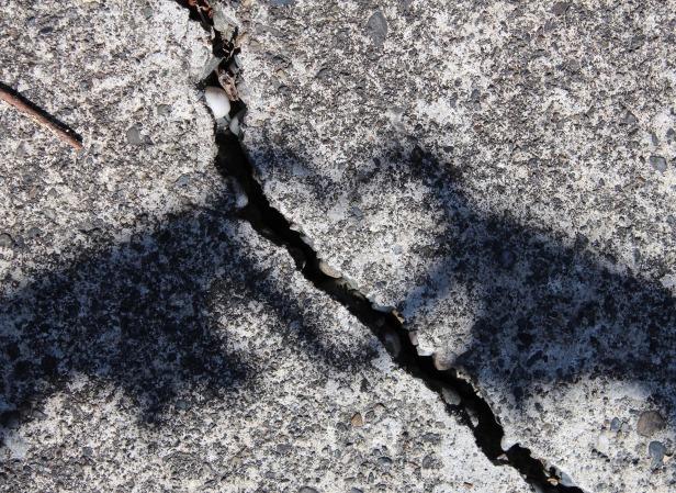 heart-905598_1920.jpg